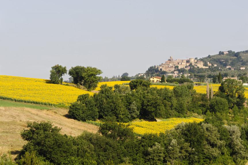 bigstock-Landscape-In-Umbria-Near-Todi-29477222-862x574[1]